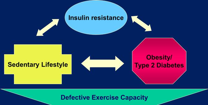 diabetes cajrat kuder